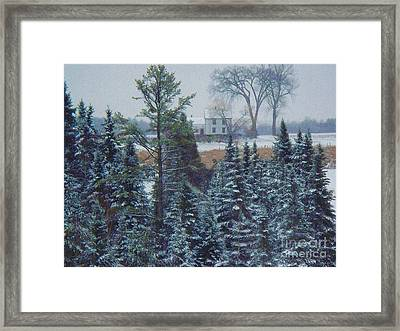 Through The Trees Framed Print by Joy Nichols