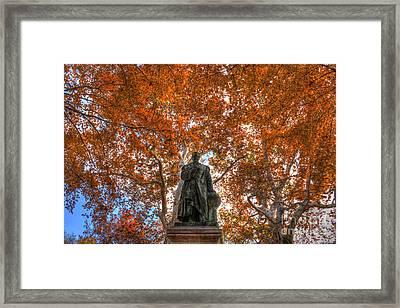 Through The Trees Framed Print by Mark Ayzenberg