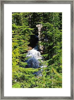 Through The Trees Framed Print by Randy Giesbrecht