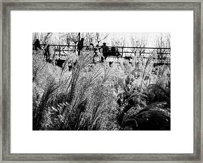 Through The Winter Grasses Framed Print by Jon Woodhams