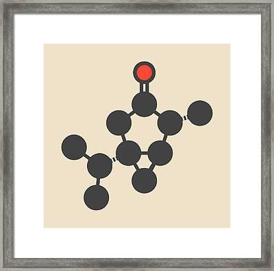 Thujone Absinthe Molecule Framed Print by Molekuul
