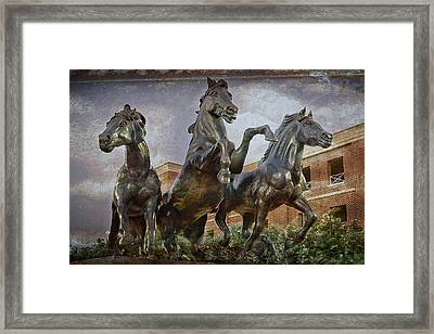Thundering Mustangs Framed Print by Joan Carroll
