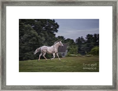 Thundersoul Framed Print by Evelina Kremsdorf