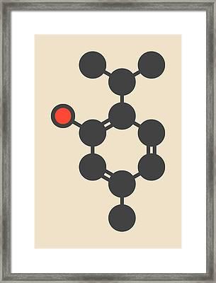Thymol Oil Of Thyme Molecule Framed Print by Molekuul