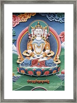 Tibetan Buddhist Temple Deity Sculpture Framed Print by Tim Gainey