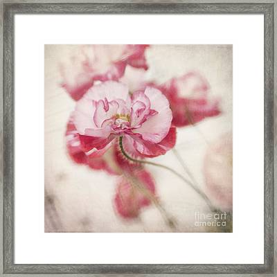 Tickle Me Pink Framed Print by Priska Wettstein