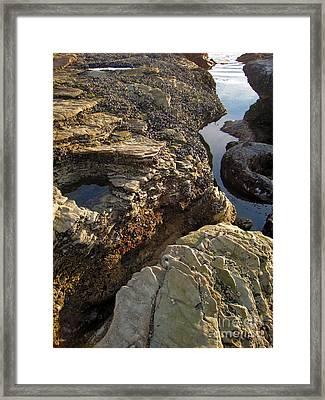 Tide Pools - 02 Framed Print by Gregory Dyer