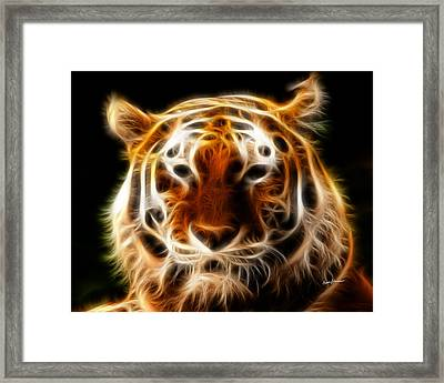 Tiger Framed Print by Anthony Caruso