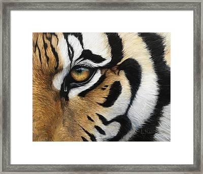 Tiger Eye Framed Print by Lucie Bilodeau