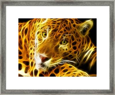 Tiger Face  Framed Print by Mark Ashkenazi