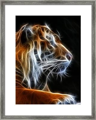 Tiger Fractal 2 Framed Print by Shane Bechler