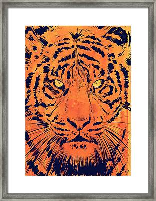 Tiger Framed Print by Giuseppe Cristiano