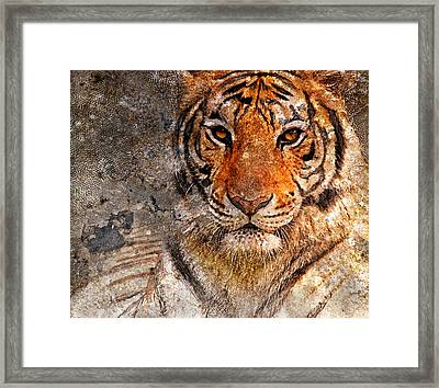 Tiger Life Framed Print by Yury Malkov