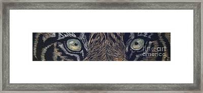 Tiger Momma's Always Watching Framed Print by Brenda Brown