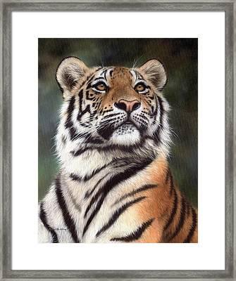 Tiger Painting Framed Print by Rachel Stribbling