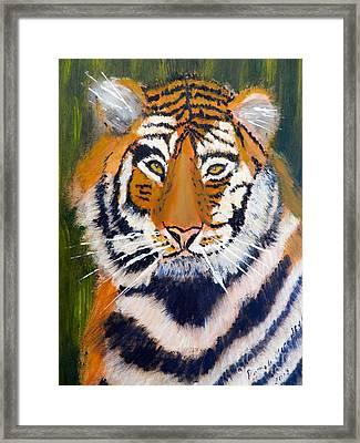 Tiger Framed Print by Pamela  Meredith
