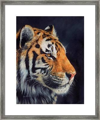 Tiger Profile Framed Print by David Stribbling