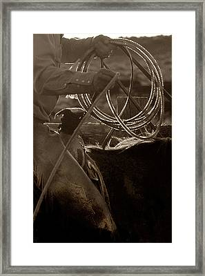 Tight Rope Framed Print by Dixie Wilson
