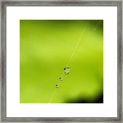 Tight Rope Framed Print by Rebecca Cozart