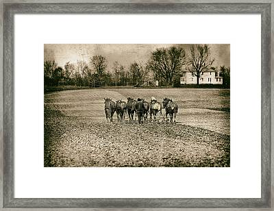 Tilling The Fields Framed Print by Tom Mc Nemar