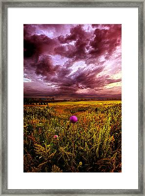Time And Again Framed Print by Phil Koch