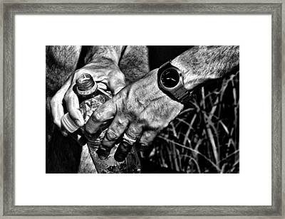 Time For A Break Framed Print by Karol Livote