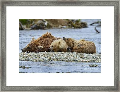 Time To Relax Framed Print by Dan Friend