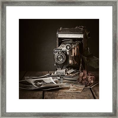 Timeless Framed Print by Amy Weiss