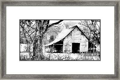 Timeless In Black And White Framed Print by Betty LaRue