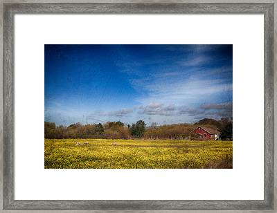 Times Like These Framed Print by Laurie Search