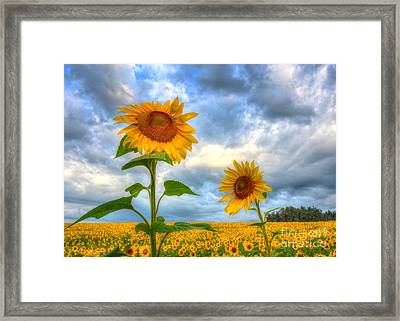 Times Two Framed Print by Debbi Granruth
