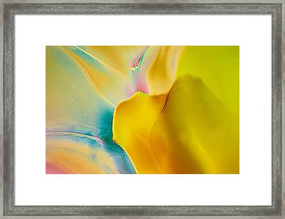 Tinkerbell Framed Print by Omaste Witkowski