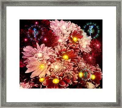 Tinkerbells Framed Print by Michael Rucker