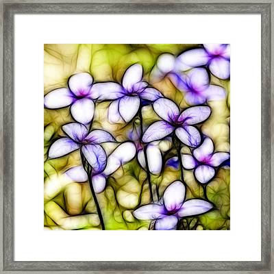 Tiny Bluet Wildflower Batik Framed Print by Kathy Clark
