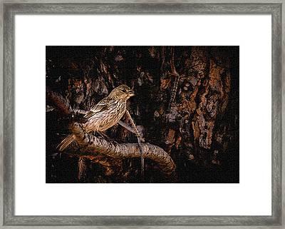 Tiny Sparrow Huge Tree Framed Print by Bob and Nadine Johnston