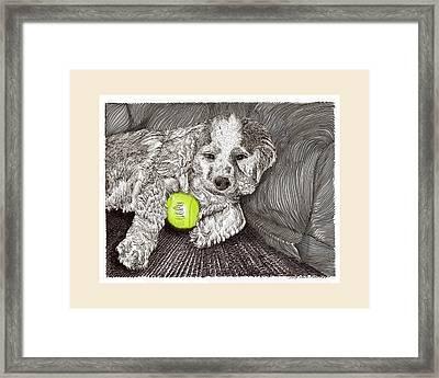 Tired Puppy Framed Print by Jack Pumphrey