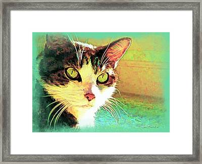 Tj In The Sun Framed Print by Joan  Minchak
