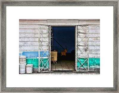 Tj The Back Door By Diana Sainz Framed Print by Diana Sainz