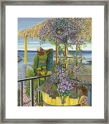 Tl 2a Feel'n Frisky Framed Print by SCWarren