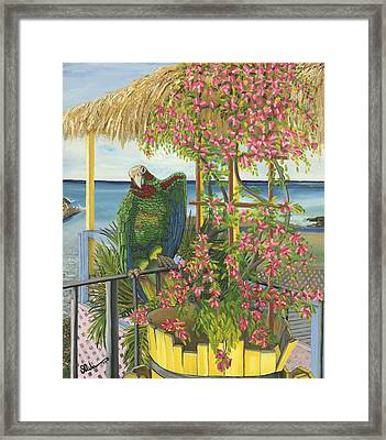 Tl2 Feel'n Playful Framed Print by SCWarren