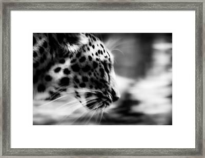 To Close Framed Print by Mark Hazelton