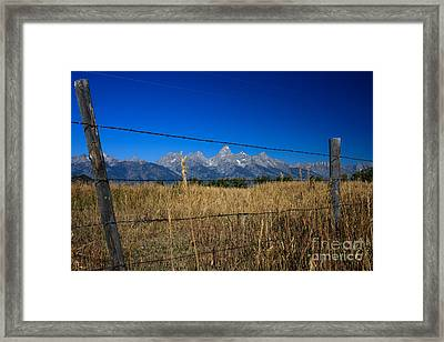 To Keep All The Nature In Framed Print by Karen Lee Ensley