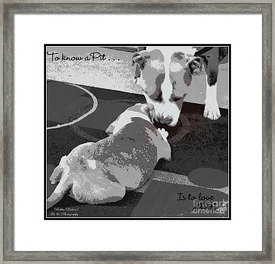 To Know A Pit Is To Love Framed Print by Bobbee Rickard