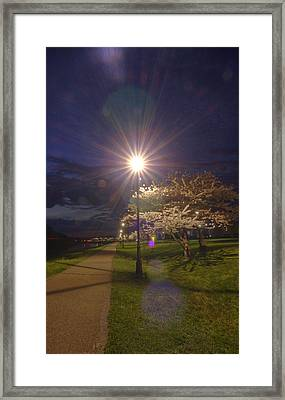 To Light The Way Framed Print by Shirley Tinkham