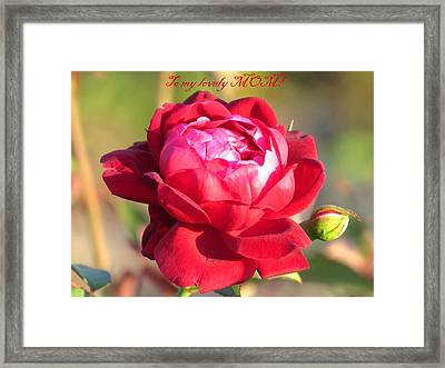 To My Lovely Mom Framed Print by Zina Stromberg