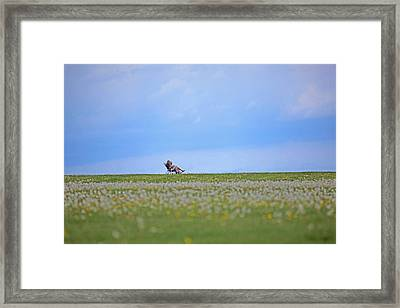 To Relax Framed Print by Karol Livote