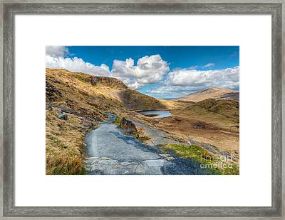 To The Lake Framed Print by Adrian Evans
