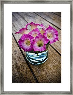 Tobacco Flowers Framed Print by Frank Tschakert
