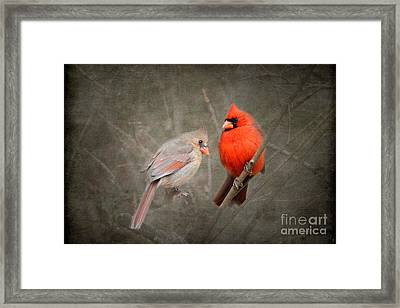 Together Again Framed Print by Jai Johnson