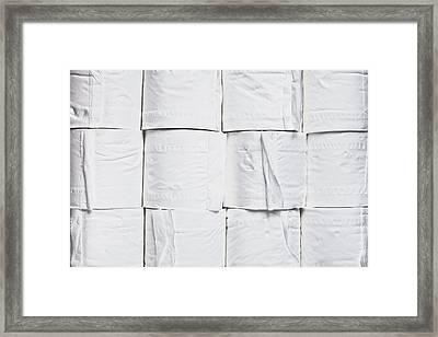 Toilet Paper Framed Print by Tom Gowanlock